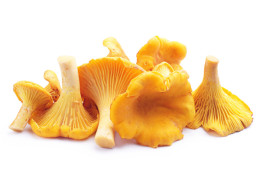 Chanterelle blanched Food Garden 2,5 kg
